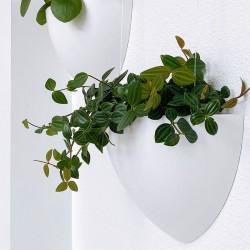 Botaniq Flowerpot White