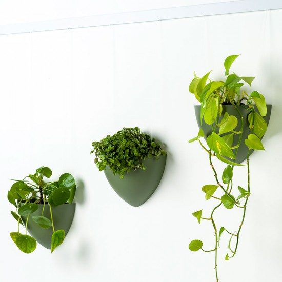 Artiteq 7600.120 Botaniq 1,25L green hanging plant pot for hanging plants on your wall from your picture hanging rail