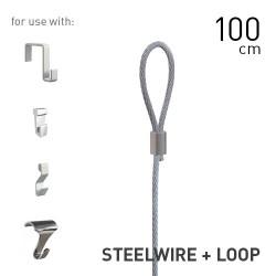 Steelwire 2mm + Loop 100cm
