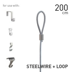 Steelwire 2mm + Loop 200cm