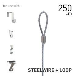 Steelwire 2mm + Loop 250cm