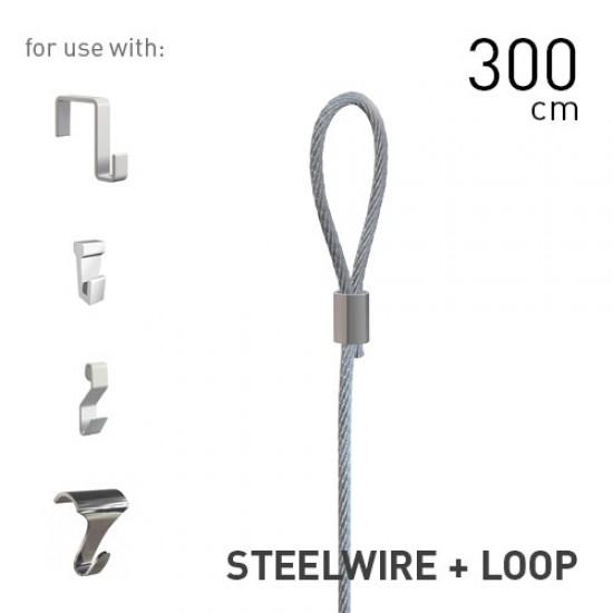 Artiteq Steelwire 2mm + Loop 300cm